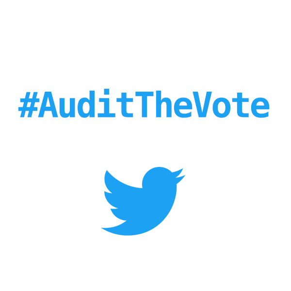 auditthevote