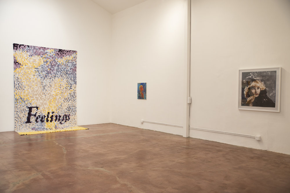 Installation view at HILDE, 2017