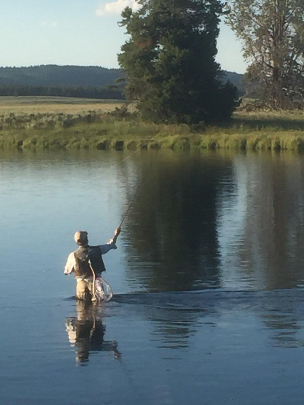 The Henry's Fork of the Snake River (photo by Greg Stevens)