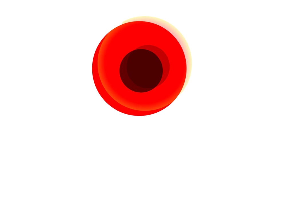 Vetrans Red Poppy Award.png