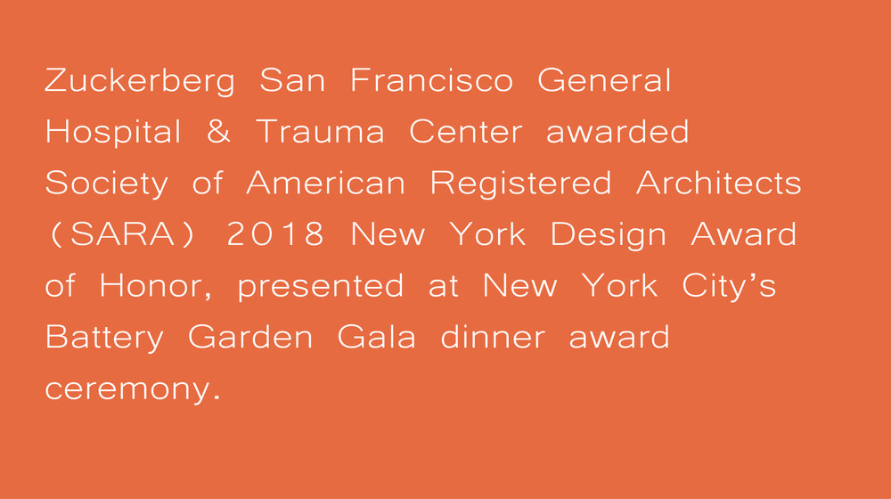 Sara NY award_Artboard 5.jpg