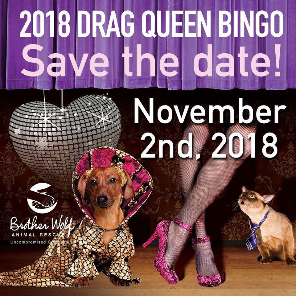 drag queen bingo 2018.jpg
