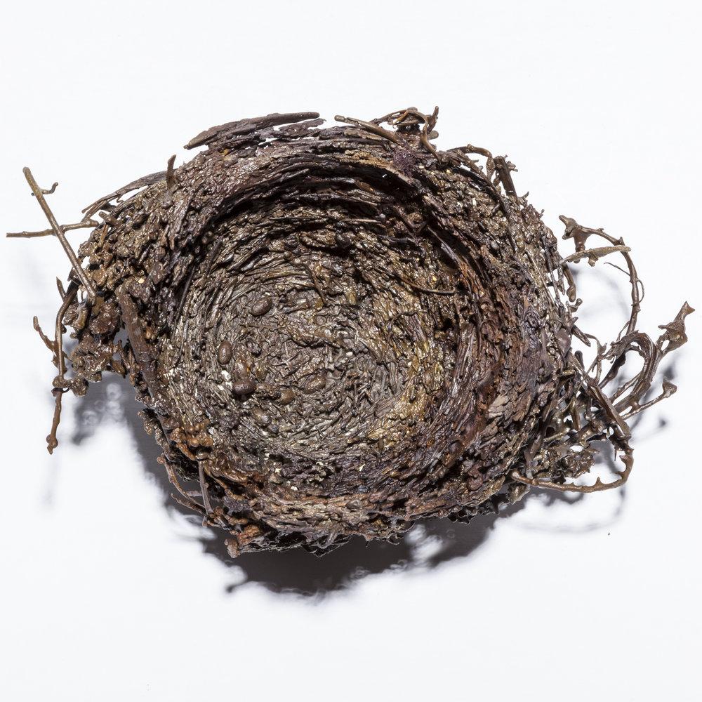 BaleCreekAllen Nests-003.jpg