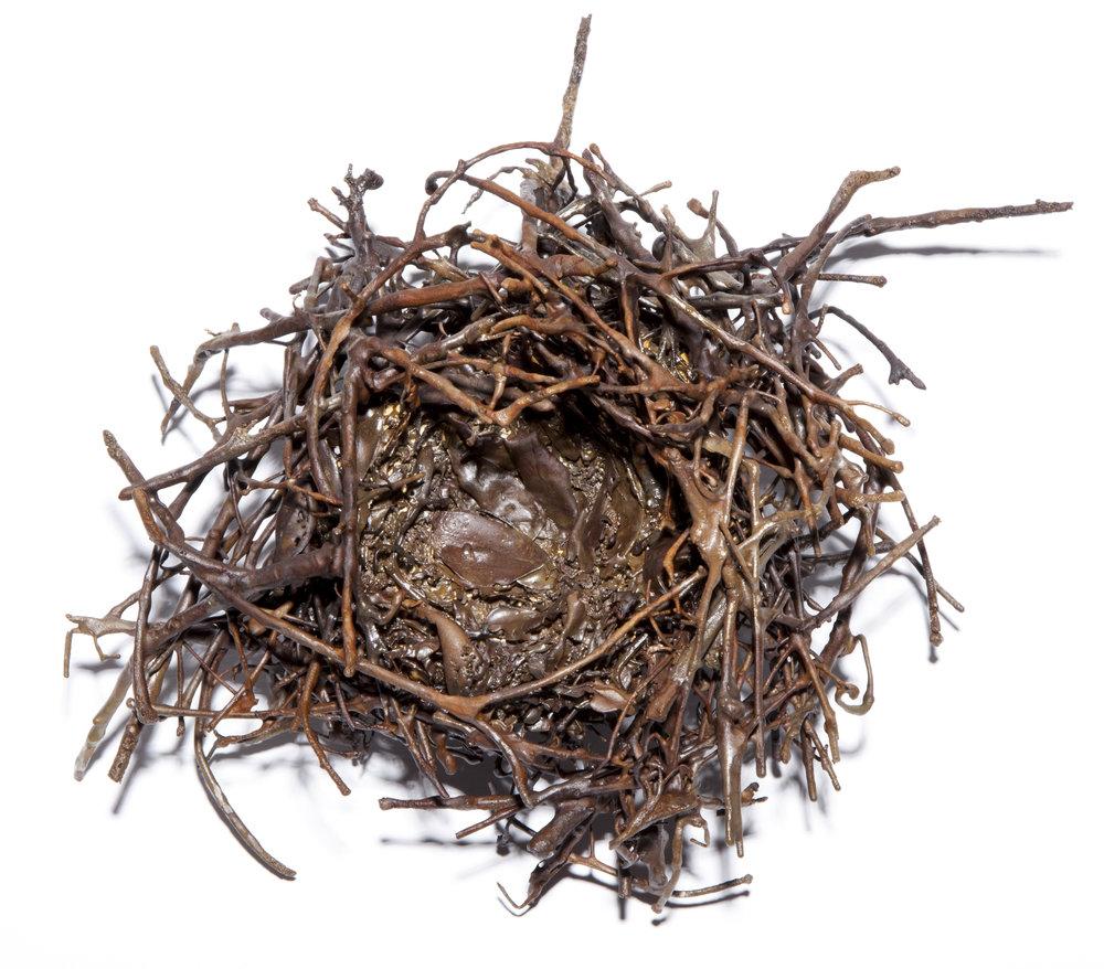 BaleCreekAllen Nests-013.jpg