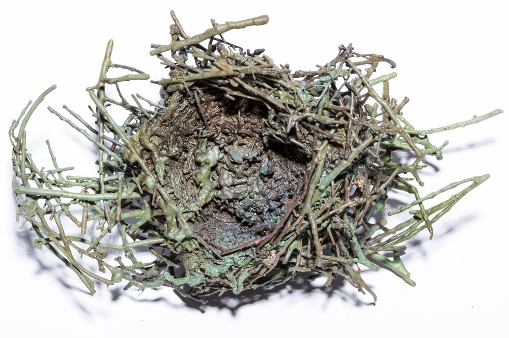 BaleCreekAllen Nests-019.jpg