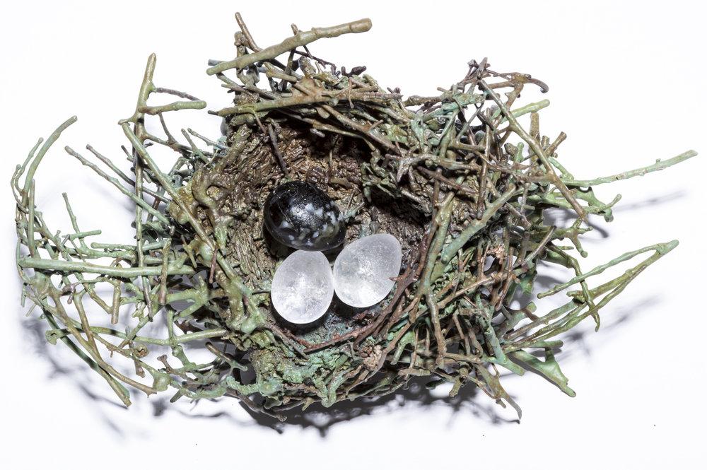 BaleCreekAllen Nests-020.jpg