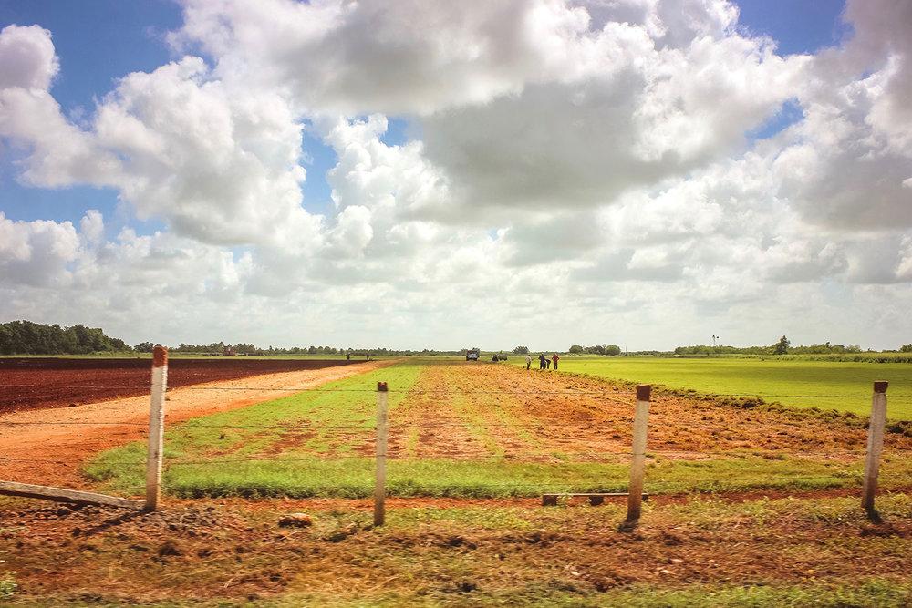 Cuba-Countryside-2.jpg
