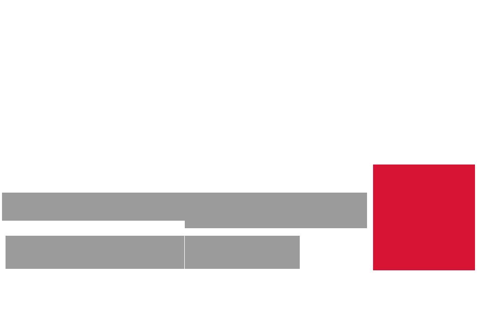 logo-theflamingbeacon::