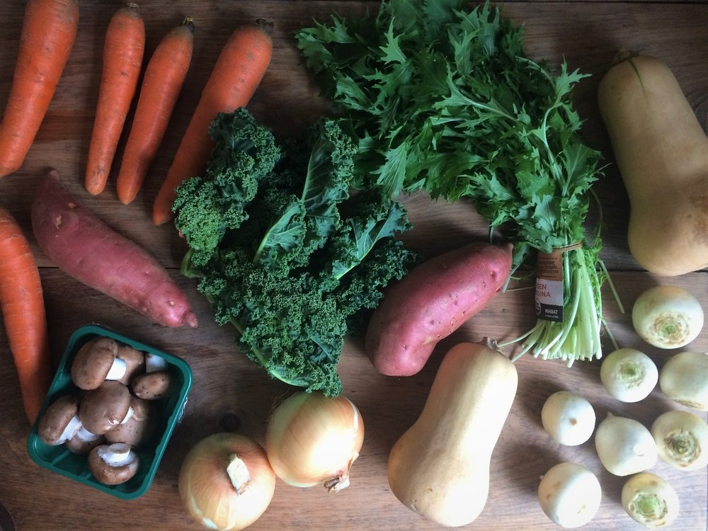 november csa deliveries || planting my roots