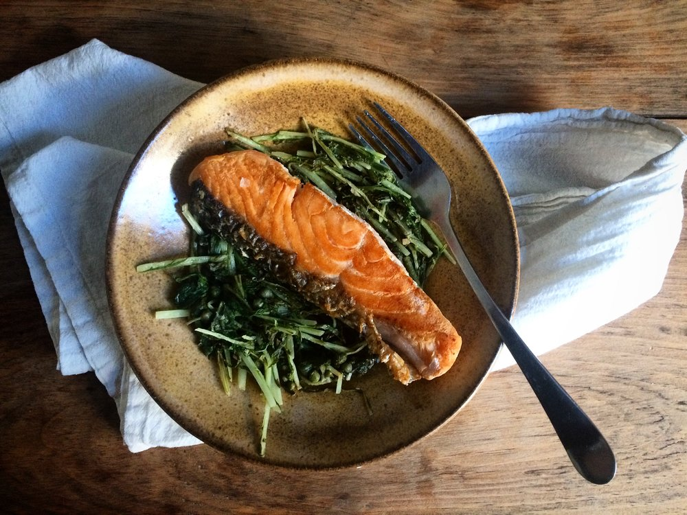 salmon with mizuna || planting my roots