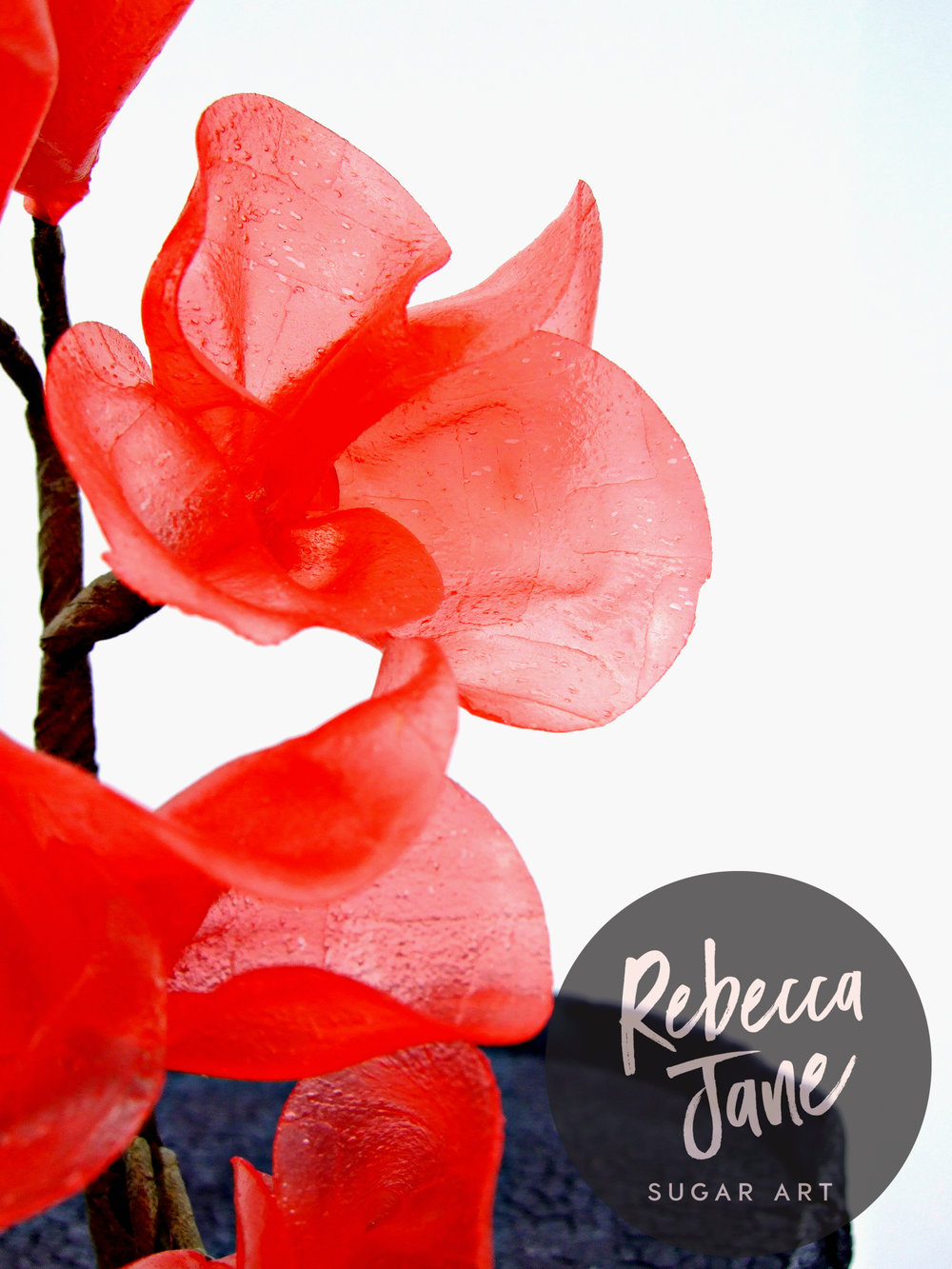 Rebecca Jane Sugar Art - Red rice paper flowers on black crackle textured fondant cake