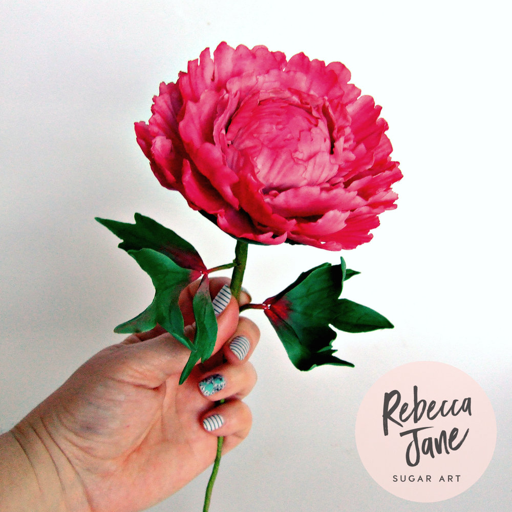 Rebecca Jane Sugar Art - sugar flower long stem pink peony