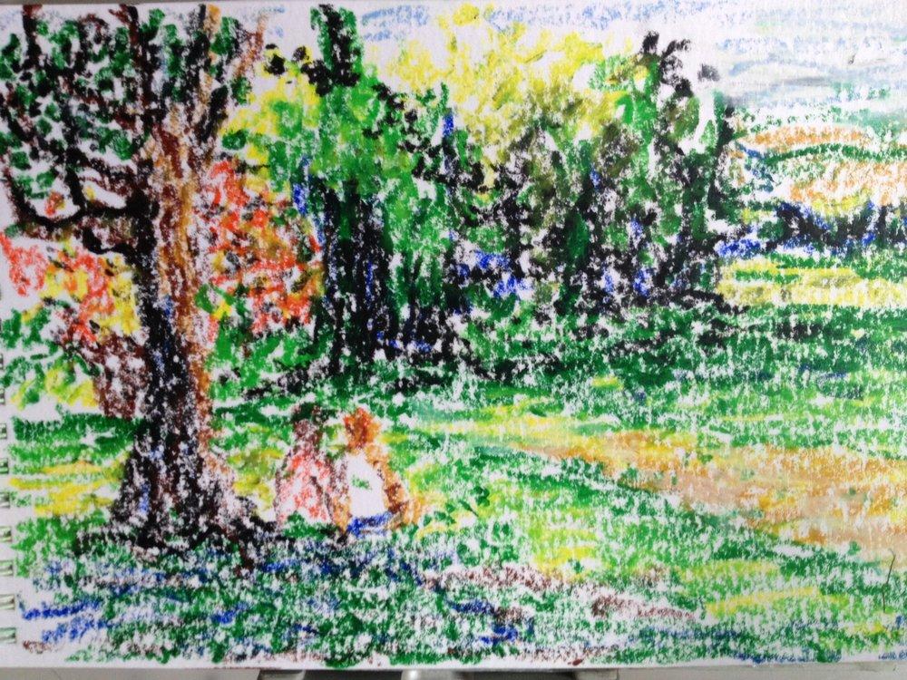 Wilderness outside Hidcote Garden