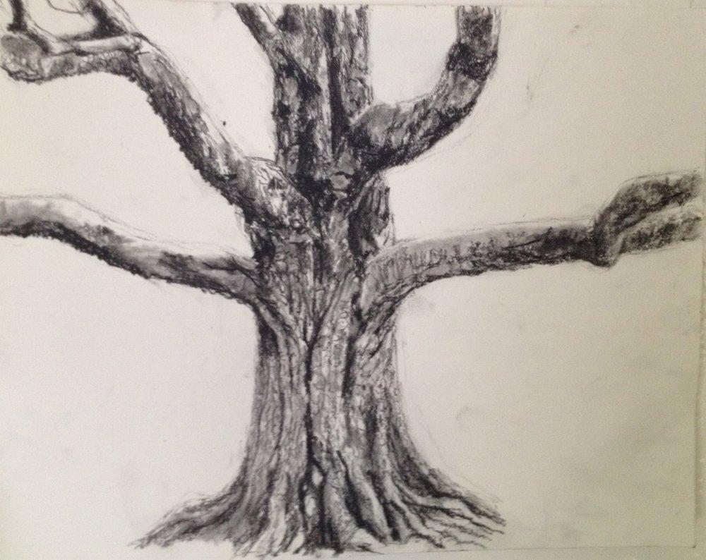 Westonbirt Arms Welcoming Tree