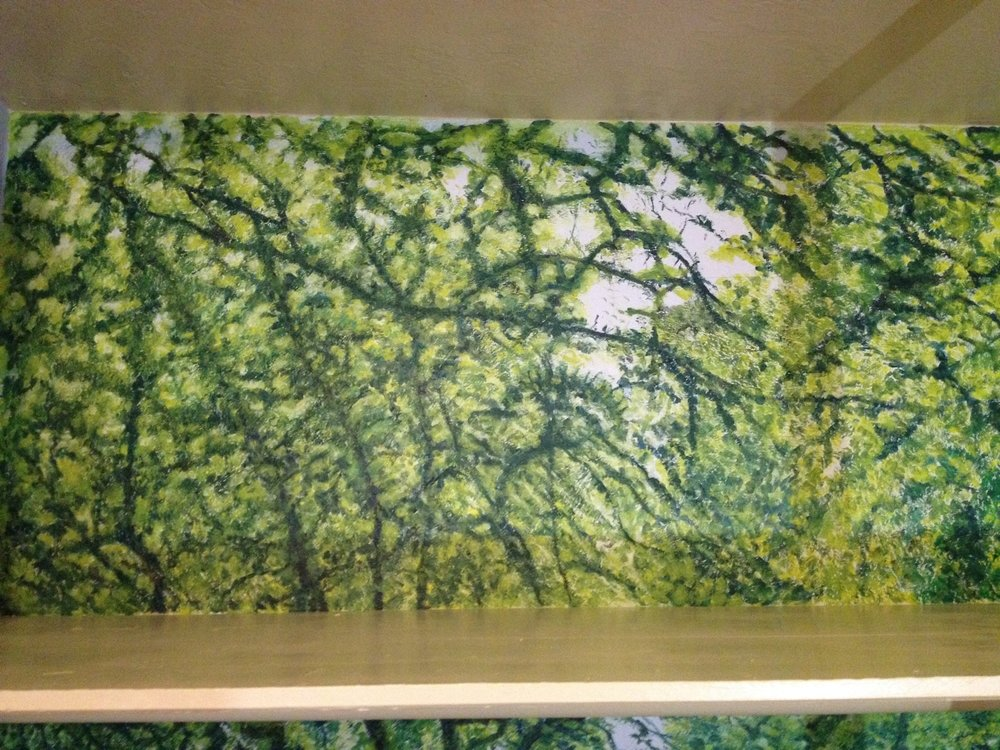 Upper Shelf - Skylight over Hidcote Orchard