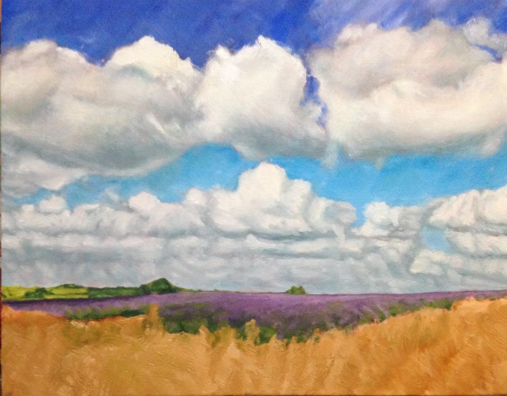 work in progress: lavender field and grass