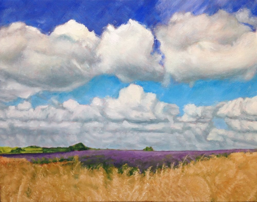Completed lavender fields