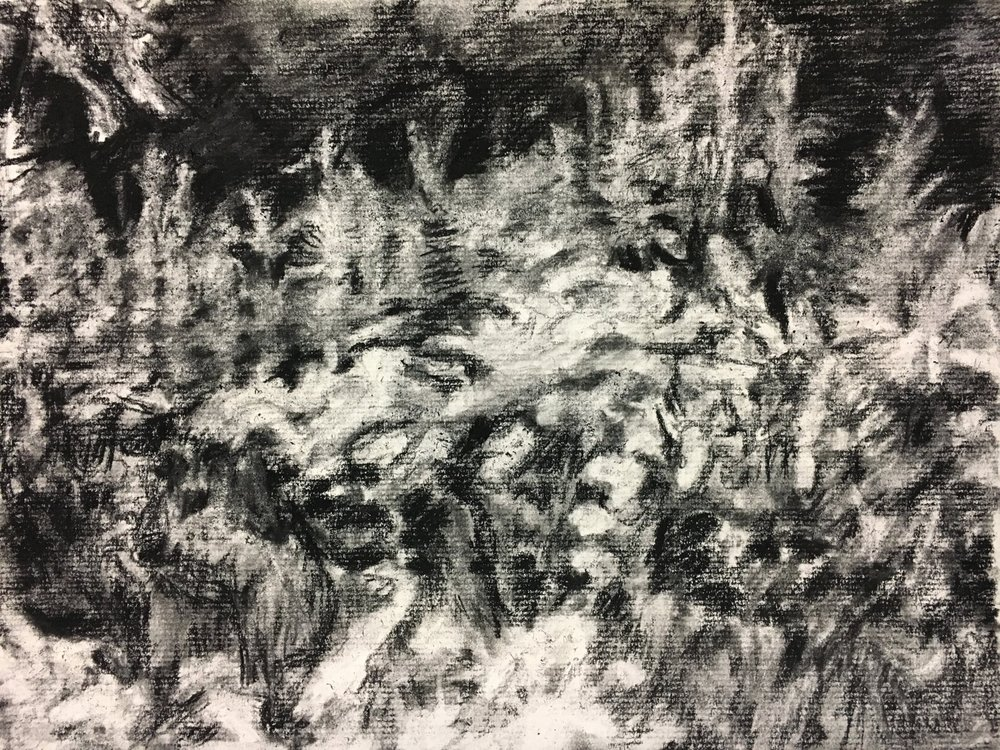 Charcoal sketch for painting