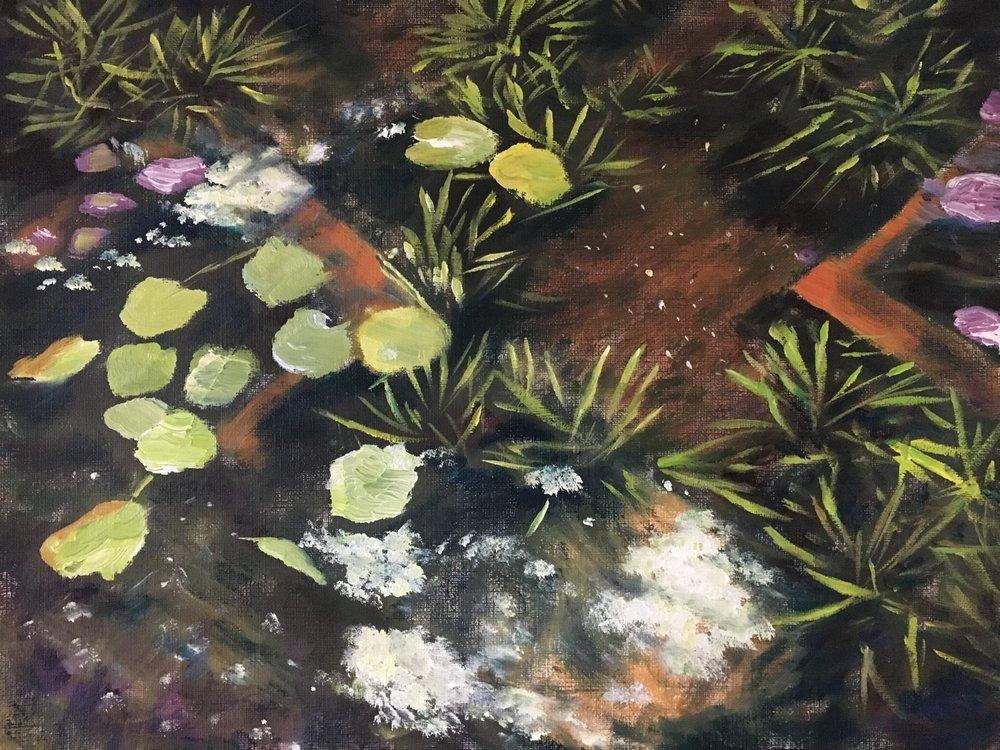 Oil Sketch of Garden Pond Completed 25 Nov
