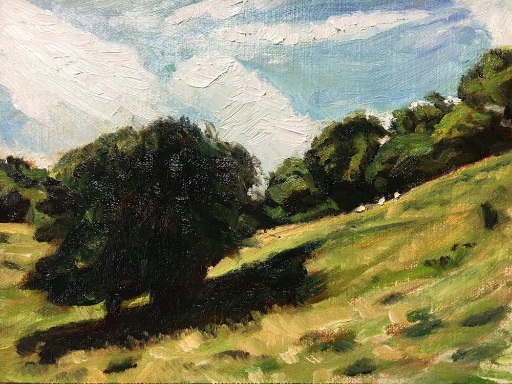 Quick Study of Dover's Hill above Chipping Campden
