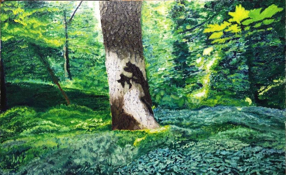 Lidcombe Wood