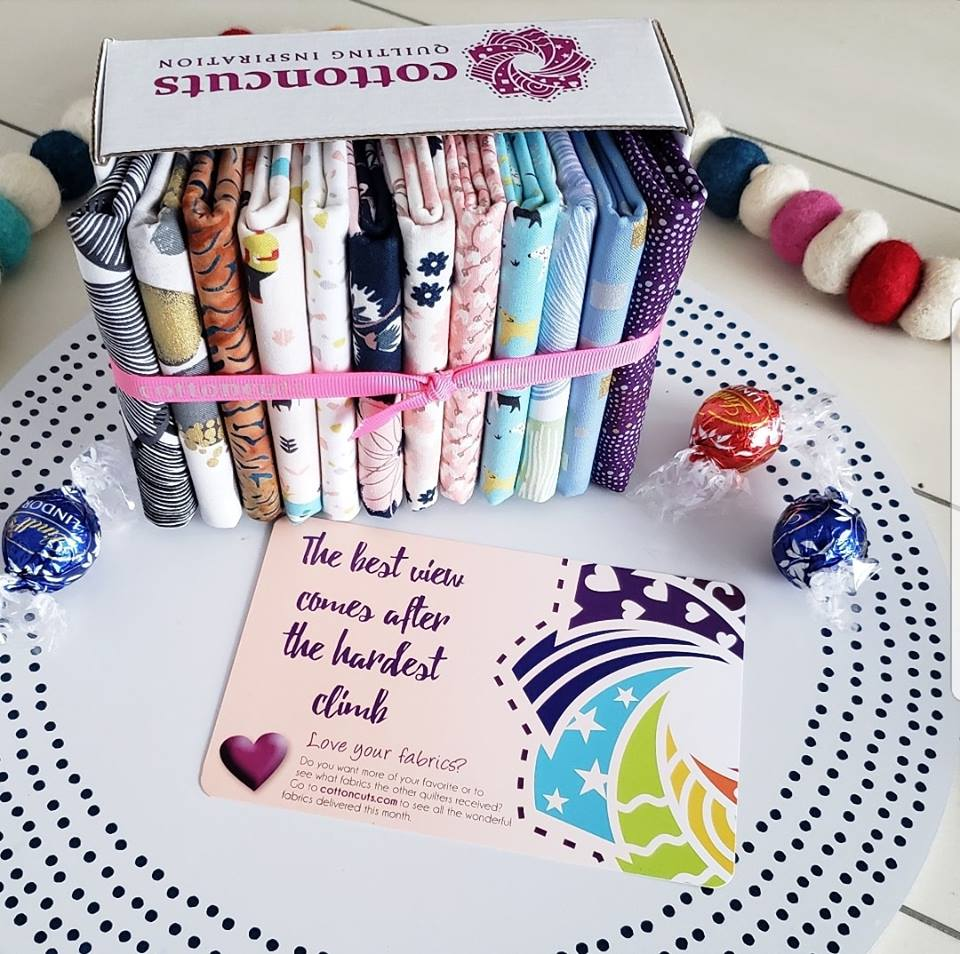 Cotton Cuts February Classic Box featuring Riley Blake Designs Fabric Bliss
