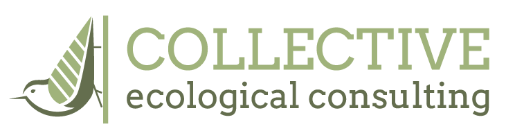 Collective Ecological Consulting