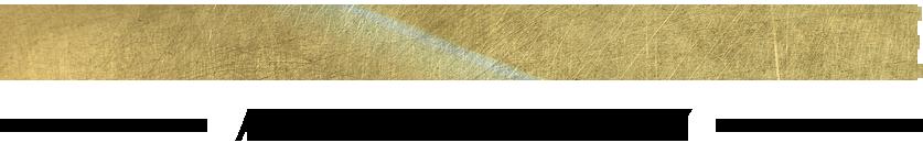 Goal Mettle Academy - Gold