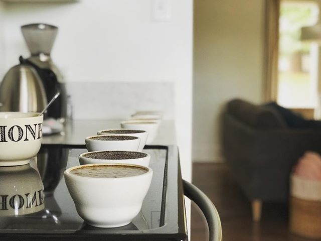 home work... abc's - always be cupping . . . #pinedropcoffee #pdcr