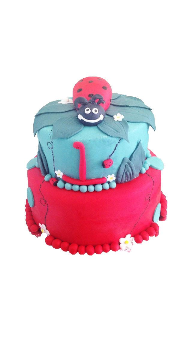 Lady Bug shower cake