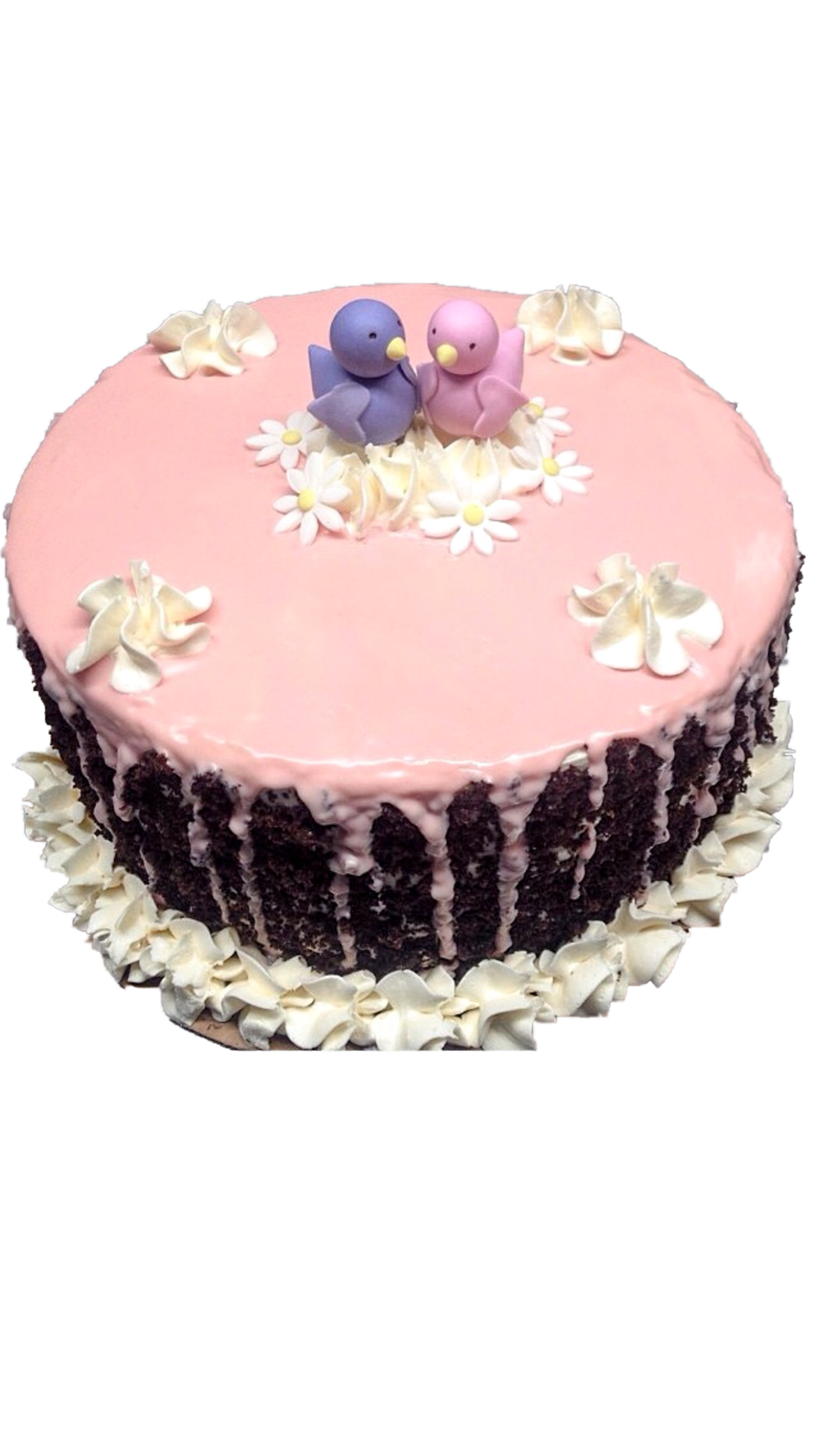 Bird Buttercream cake