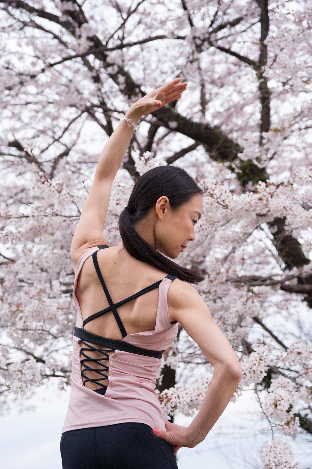 Sakura 2017 Back Side Pause 2479.jpg