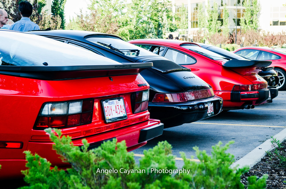 Rear shots of classic Porsche's in the Euro Coffee and Cars meet June 7, 2016