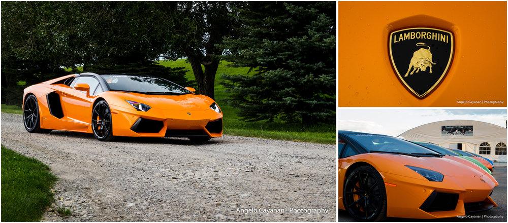 2016 Lamborghini&LobstersPoloNight _AventadorCollage