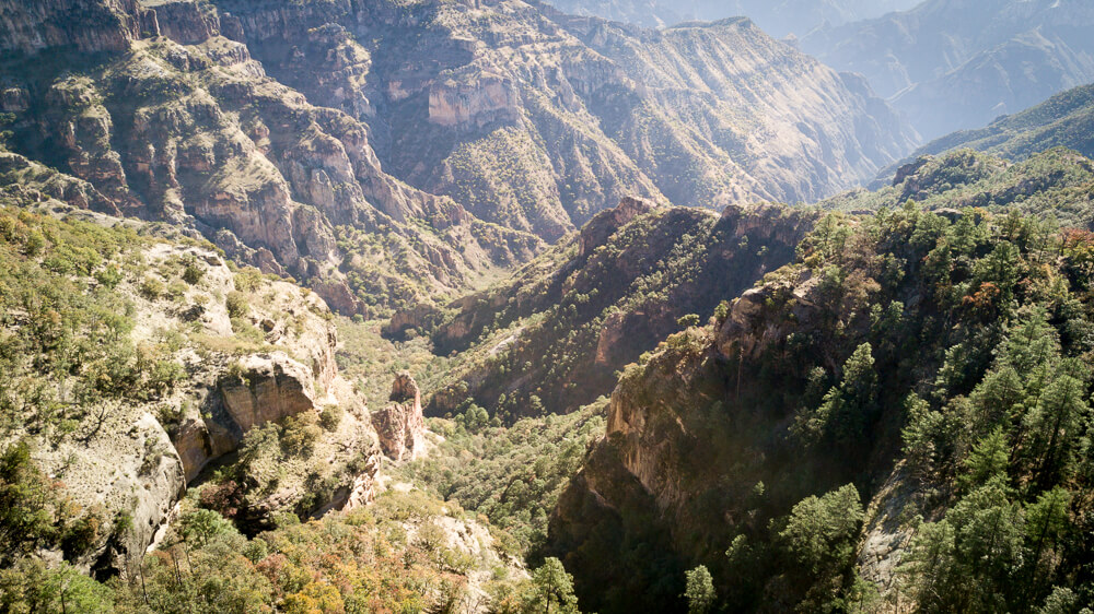 The Copper Canyon in Posada Barrancas.