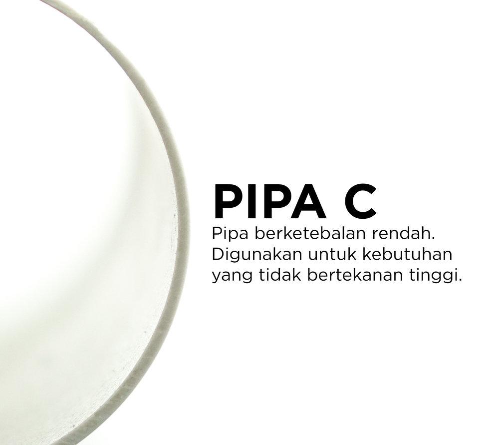 Pipa C.jpg