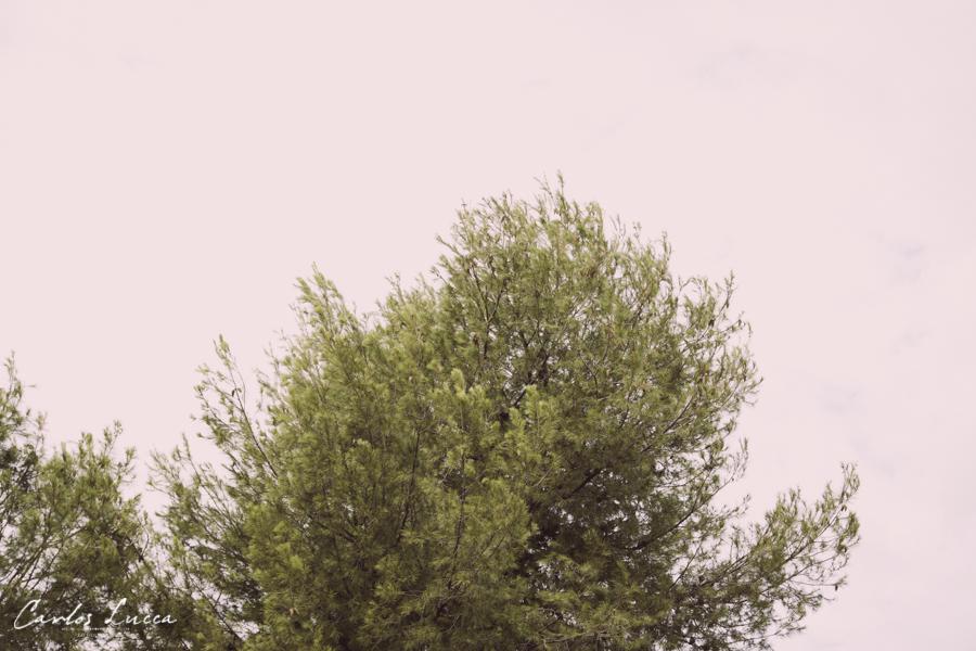Sesion-diferente-Carlos-Lucca_060