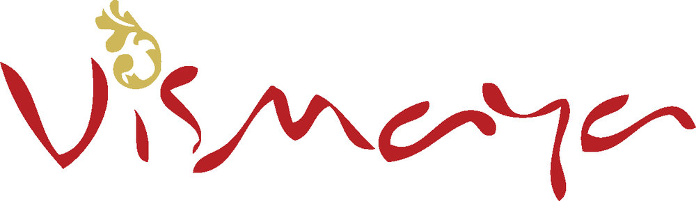 hi-res vismaya logo copy (2).jpg
