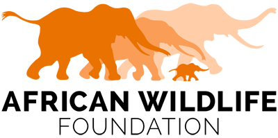 AWF_Logo_Standard_Orange_Digital_LowRes_400.png
