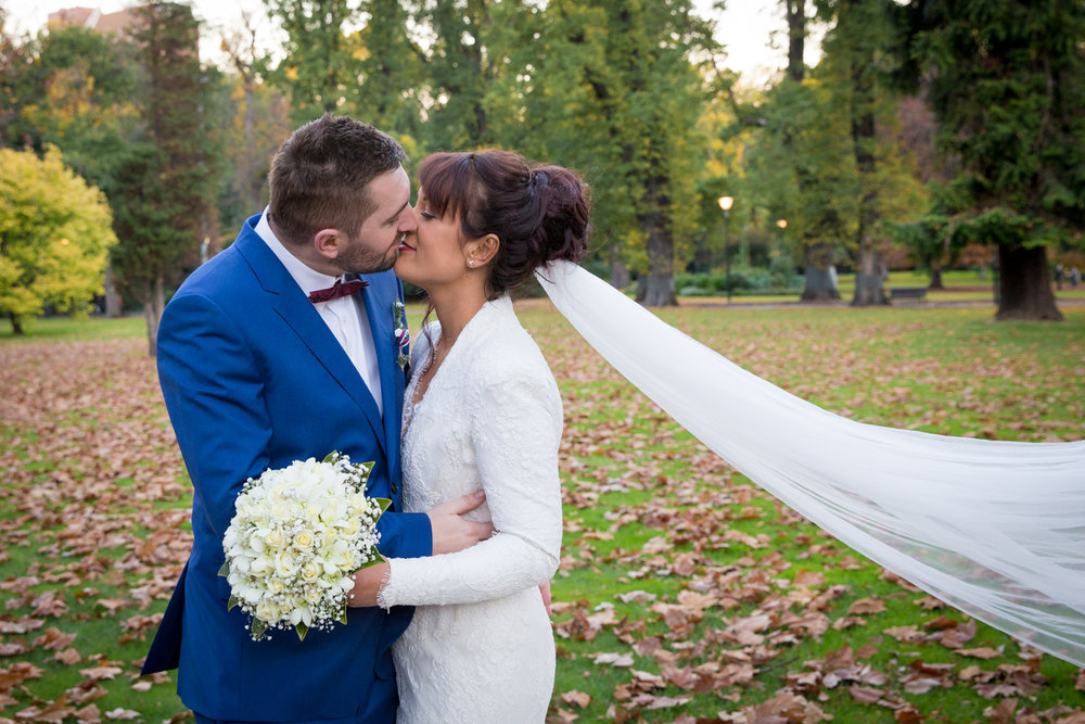 Four Daisies - Melbourne wedding photographer, Fitzroy Gardens, romantic veil, photography