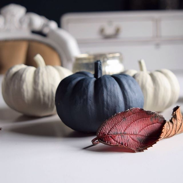 Happy Halloween 🎃👻🕸🖤 ⠀ #pumpkins #pumpkin #halloween #autumn #autumnleaves #myhousethismonth #halloweendecor #halloweendecorations #halloween2018 #falldecor #falldecorations #falldecorating #halloweenpumpkin #halloweenpumpkins #myhouseinoctober #paintedpumkins #halloweeninterior #fallinterior #myhomevibe #pumpkinpainting #stylingtheseasons #upandautumn