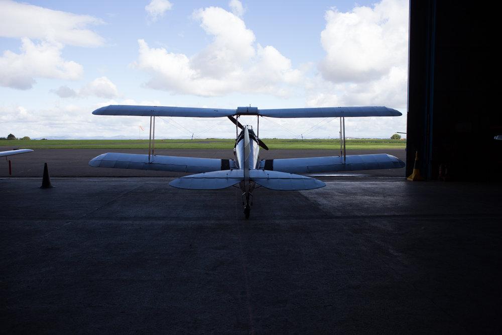 Tiger Moth-17.jpg