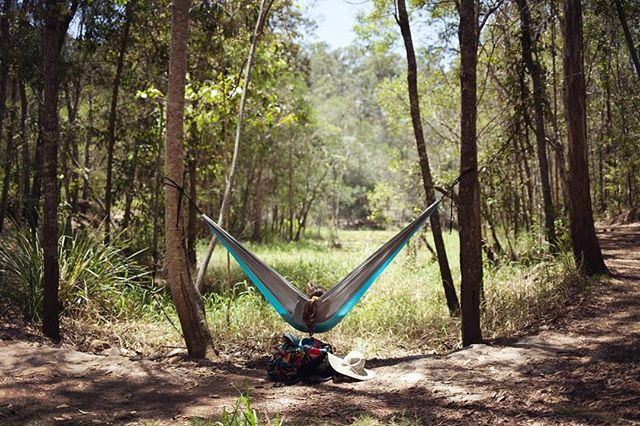 9/10 lunch spot during yesterday's escape from the city to D'Aguilar National Park. Rainforest, monitor lizards, turtles, sunshine and lake swimming 👌🏼 #australia #adventure #hammock #lunch #picnic #camp #camping #travel #forest #rainforest #trees #path #walk #hike #summer #queensland #qld #brisbane #nature #lake