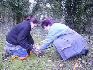 L1_forest_school_pupils_sawing_in_codford.jpg