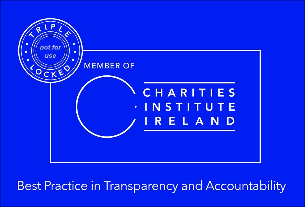 Charities Institute Triple Lock