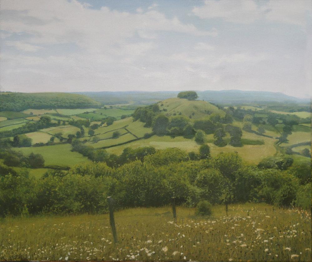 Smallpox Hill from Uley Bury