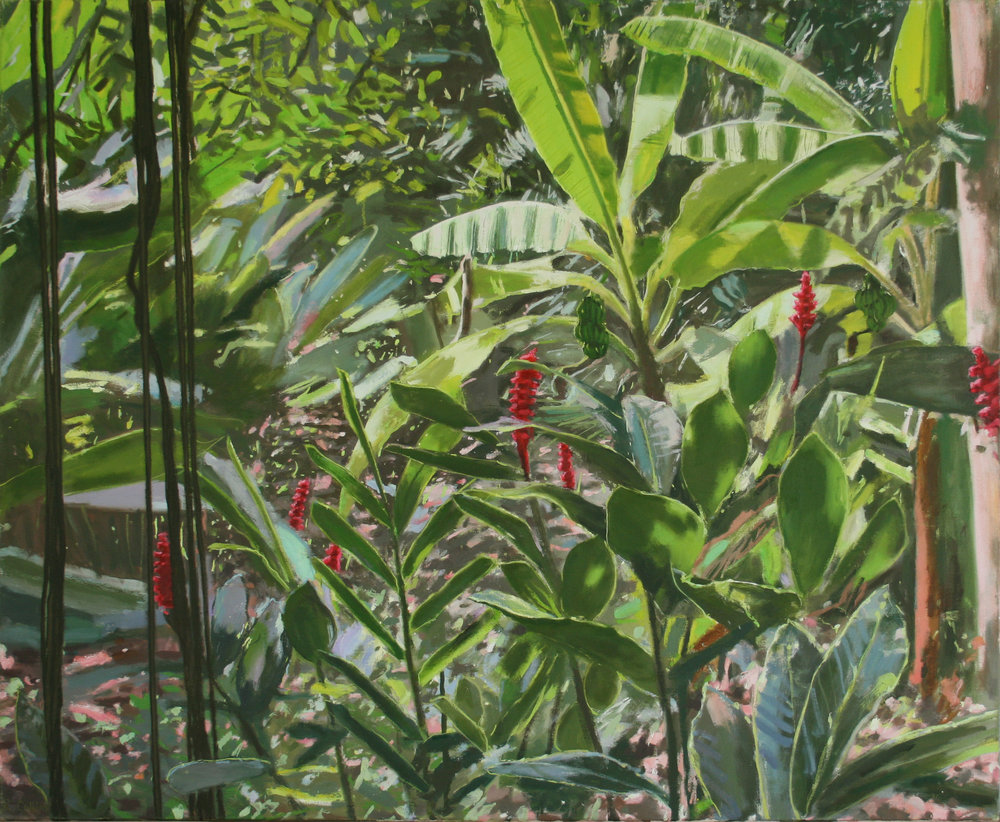 Lianas and Ginger Lilies