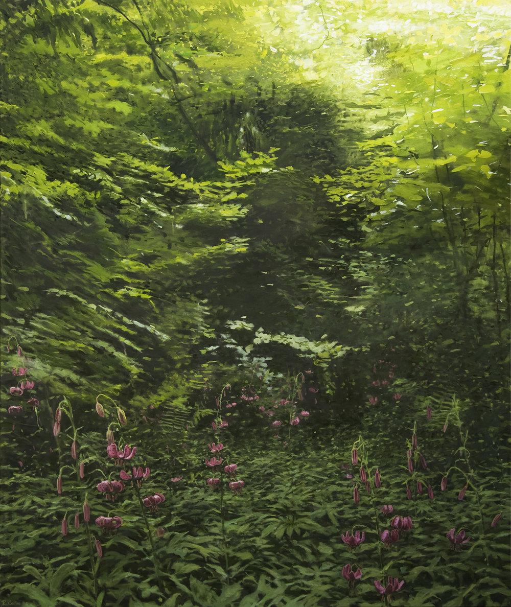 Wild Martagon Lilies above Tintern