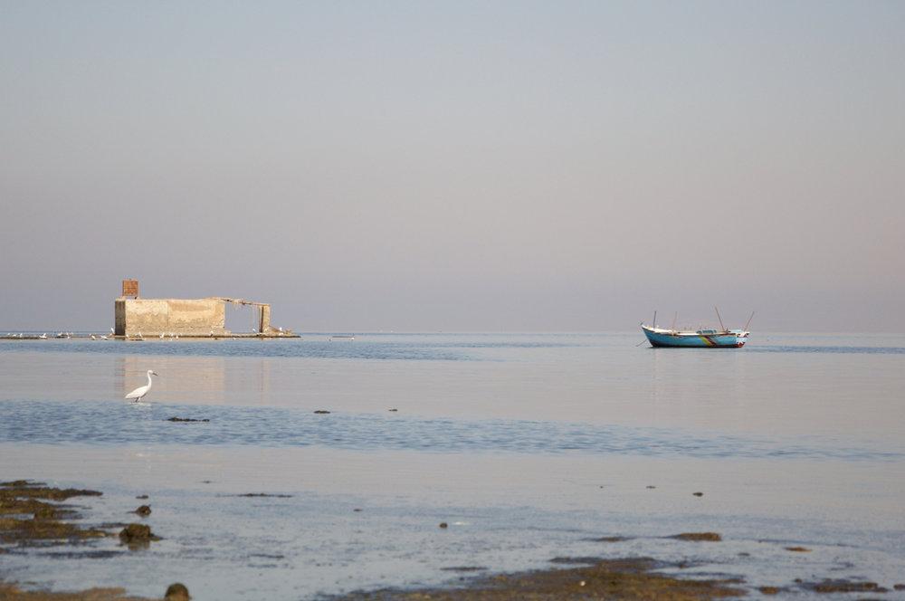 Lake Qarun.Fayoum.Egypt.2018.© Michele Cortina