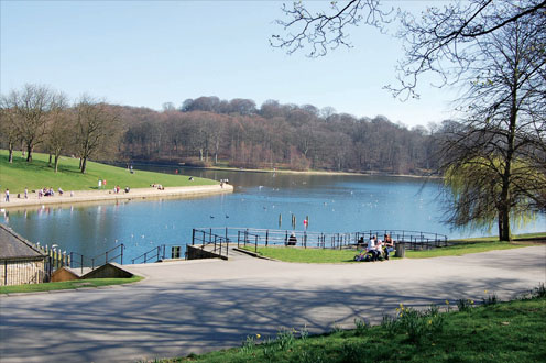 Roundhay Park.jpg